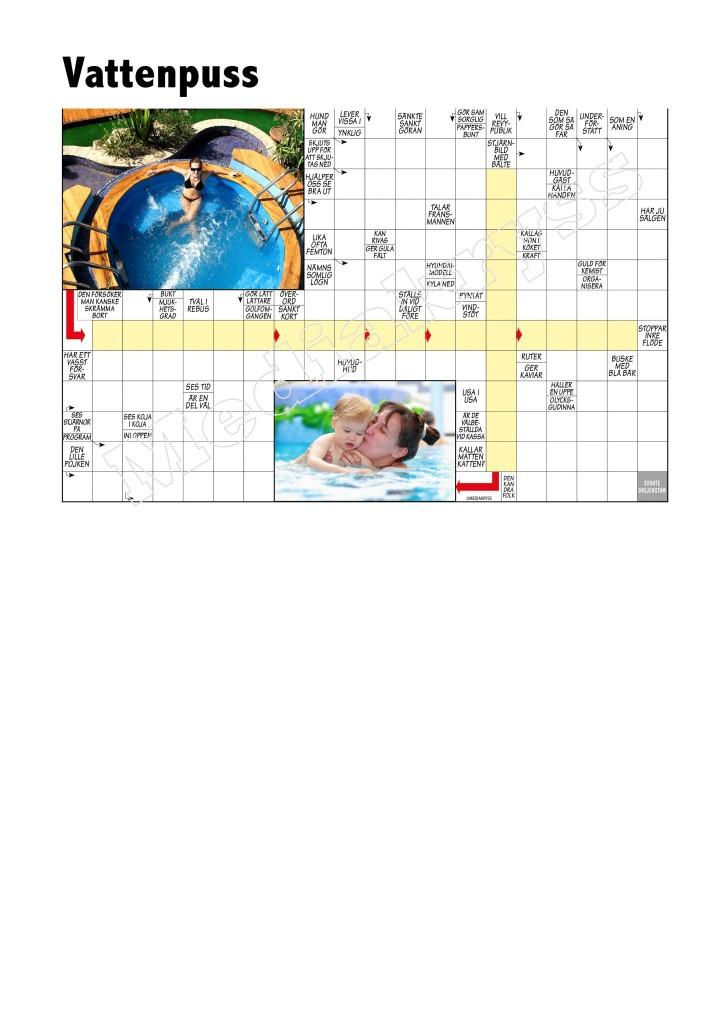 Korsord 318 – Vattenpuss