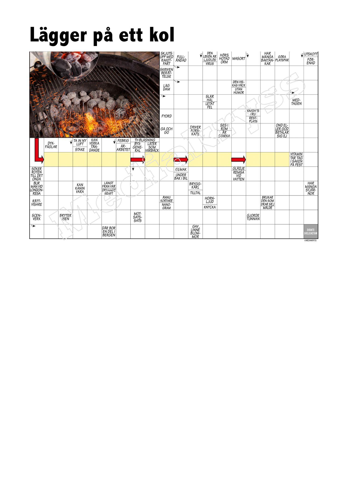 Korsord 316 – Lagger pa ett kol